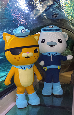 Octonauts250x350WebPreview