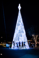 Scottsdazzle Holiday Tree Lighting and Sing-Along Event